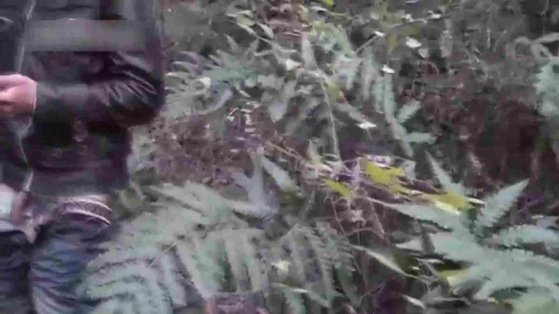 草原の中のオナニー ゲイのオナニー映像   0  69枚 21